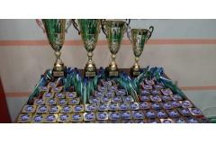 4-й турнир «Кубок главы Хабаровского района по тхэквондо ВТФ»